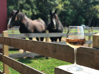 Wine glass with two horses in the background